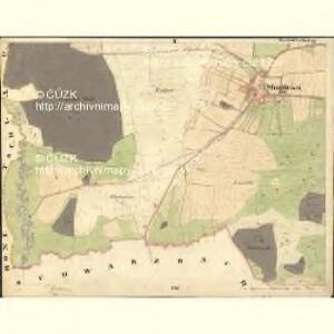 Muggrau - c4814-1-002 - Kaiserpflichtexemplar der Landkarten des stabilen Katasters
