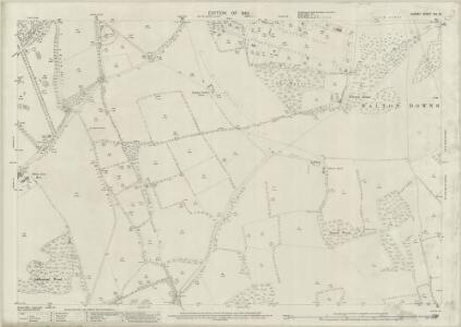 Surrey XIX.13 (includes: Ashtead; Epsom; Walton on The Hill) - 25 Inch Map