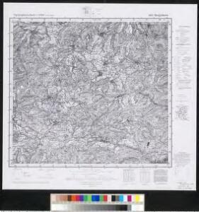 Meßtischblatt 6813 : Bergzabern, 1943