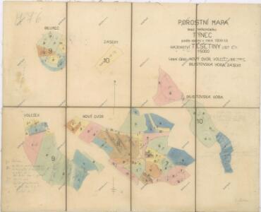 Porostní mapa hájenství Těšetiny
