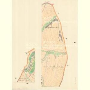 Markersdorf (Zradezna) - m0890-1-003 - Kaiserpflichtexemplar der Landkarten des stabilen Katasters