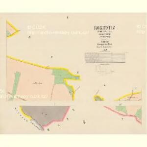 Rokitnitz (Rokitnice) - c6525-1-002 - Kaiserpflichtexemplar der Landkarten des stabilen Katasters