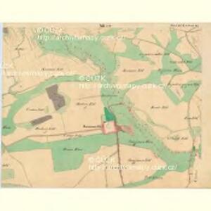 Weichseln - c8980-1-012 - Kaiserpflichtexemplar der Landkarten des stabilen Katasters