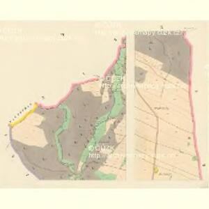 Kunwald - c3723-1-006 - Kaiserpflichtexemplar der Landkarten des stabilen Katasters