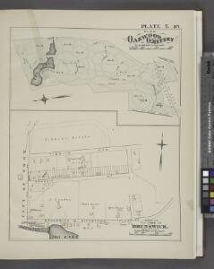 Plan Oakwood Cemetery ; Part of the Town of Brunswick. [Plate T.]