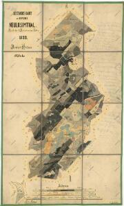 Porostní mapa revíru Jedlina