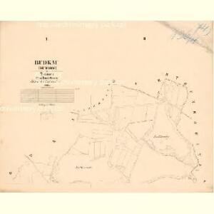 Budkau (Budkow) - c0642-1-001 - Kaiserpflichtexemplar der Landkarten des stabilen Katasters