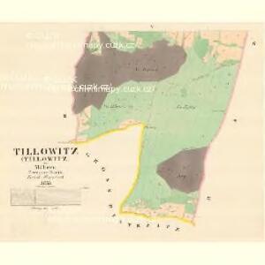Tillowitz (Tillowitz) - m3182-1-004 - Kaiserpflichtexemplar der Landkarten des stabilen Katasters