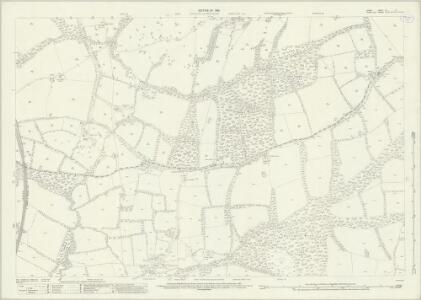 Surrey XL.16 (includes: Capel; Newdigate; Rusper) - 25 Inch Map