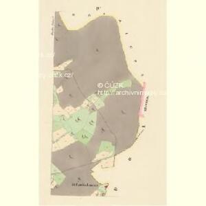 Bieschin (Běssiny) - c0213-1-004 - Kaiserpflichtexemplar der Landkarten des stabilen Katasters