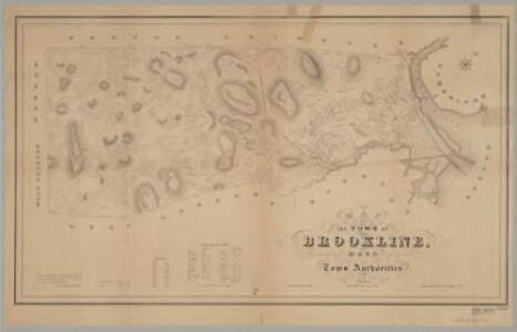 Map of the town of Brookline, Mass. : made by order of the town authorities from actual survey