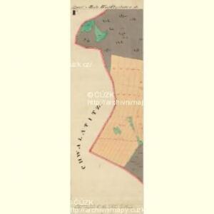 Schroeflsdorf - m3553-3-005 - Kaiserpflichtexemplar der Landkarten des stabilen Katasters