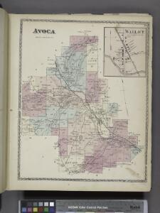 Avoca [Township]; Wallace [Village]