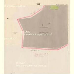 Rosshaupt - c6597-1-015 - Kaiserpflichtexemplar der Landkarten des stabilen Katasters