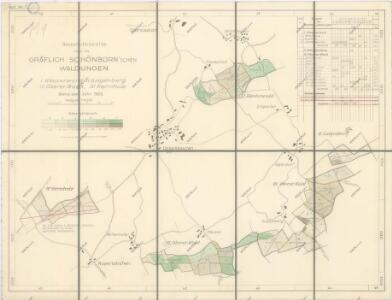 Porostní mapa lesního majetku statku Oberstadion