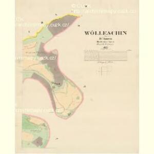 Wölleschin - c8366-1-002 - Kaiserpflichtexemplar der Landkarten des stabilen Katasters