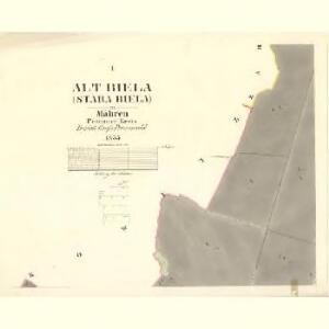 Alt Biela (Stara Biela) - m2836-1-001 - Kaiserpflichtexemplar der Landkarten des stabilen Katasters
