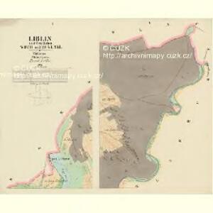 Liblin - c4026-1-001 - Kaiserpflichtexemplar der Landkarten des stabilen Katasters