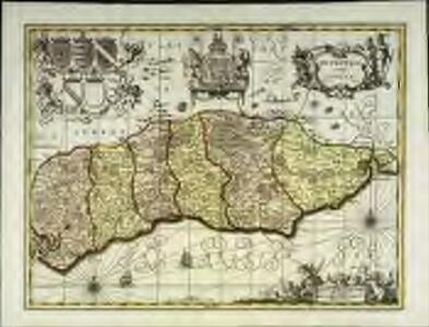 Suthsexia vernacule Sussex
