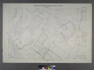 Sheet No. 47.[includes Egbert Avenue, Todt Hill Road and Dongan Hills.]; Borough of Richmond, Topographical Survey.