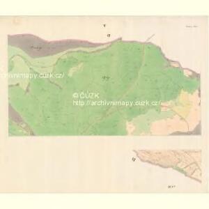 Bilnitz - m0305-1-004 - Kaiserpflichtexemplar der Landkarten des stabilen Katasters