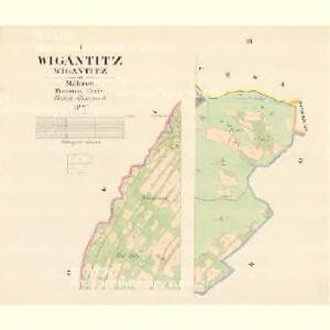 Wigantitz (Wigantitz) - m3399-1-001 - Kaiserpflichtexemplar der Landkarten des stabilen Katasters