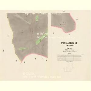 Pössigkau (Besikow) - c0146-1-004 - Kaiserpflichtexemplar der Landkarten des stabilen Katasters