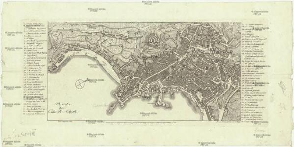 Pianta della di citta di Napoli