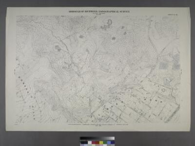 Sheet No. 40. [Includes Dongan Hills, Fingerboard Road, Richmond Road, Duncan Street, Oakdale Avenue, (Emerson Hill, Old Town)Linden Park.]; Borough of Richmond, Topographical Survey.