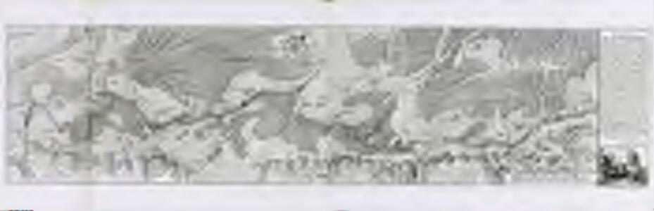 Carte von der Innondation von Ettlingen biss zu dem Kislauer Schlosse