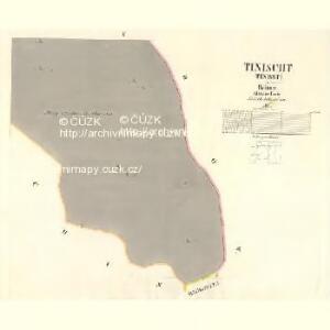 Tinischt (Tinisst) - c8155-1-005 - Kaiserpflichtexemplar der Landkarten des stabilen Katasters