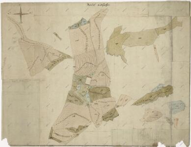 Plán pozemků a rybníků dvora Třídvoří