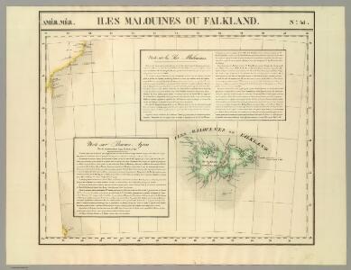 Iles Malouines ou Falkland. Amer. Merid. 41.