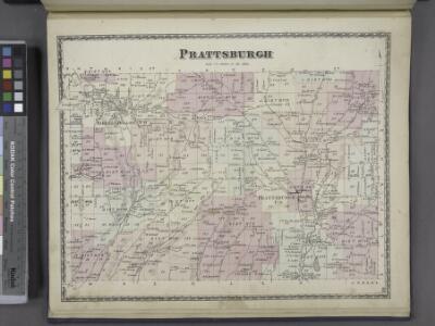 Prattsburgh [Township]