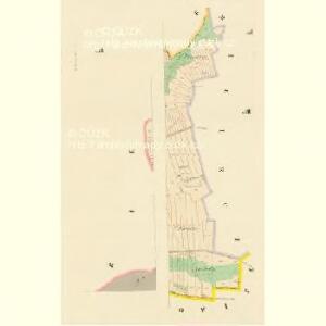 Kozlowitz (Kozlowice) - c3456-1-003 - Kaiserpflichtexemplar der Landkarten des stabilen Katasters