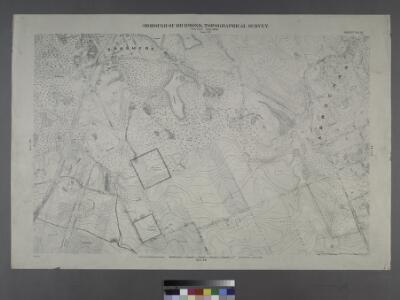 Sheet No. 41. [Includes Fingerboard Road, Old Town Road in Grasmere, Chicago Avenue, Sand Lane, Pickersgill Avenue & Cleveland Place in Arrochar.]; Borough of Richmond, Topographical Survey.
