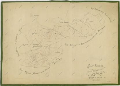 Hospodářská mapa polesí Ledenice 1
