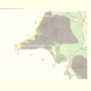 Wittiegitz (Wittiegic) - c8620-1-003 - Kaiserpflichtexemplar der Landkarten des stabilen Katasters