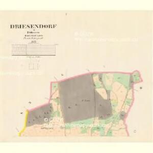 Driesendorf - c7489-1-001 - Kaiserpflichtexemplar der Landkarten des stabilen Katasters