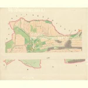 Krziwe - m1398-1-001 - Kaiserpflichtexemplar der Landkarten des stabilen Katasters