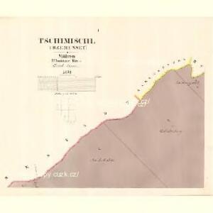 Tschimischl (Třzemesset) - m3156-1-001 - Kaiserpflichtexemplar der Landkarten des stabilen Katasters