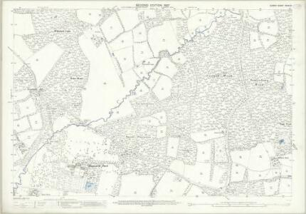 Surrey XXXIX.16 (includes: Ewhurst) - 25 Inch Map