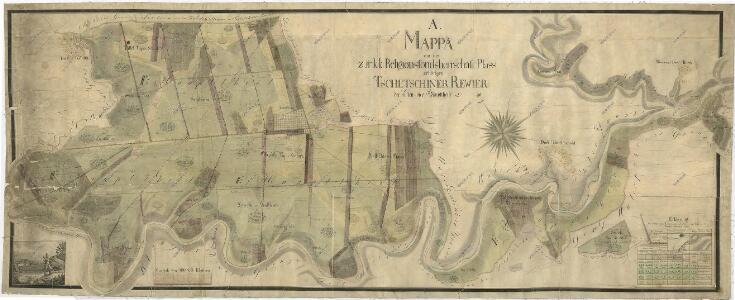 Porostní mapa čtyř hlavních částí polesí Čečín