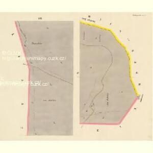 Niedergrund - c1362-2-007 - Kaiserpflichtexemplar der Landkarten des stabilen Katasters