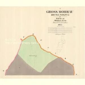 Gross Mohrau (Hruba Morawa) - m3311-1-001 - Kaiserpflichtexemplar der Landkarten des stabilen Katasters