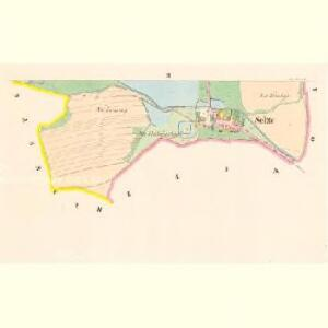 Selze - c6780-1-002 - Kaiserpflichtexemplar der Landkarten des stabilen Katasters