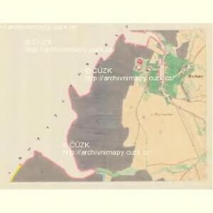 Busau (Bauzow) - m0193-1-002 - Kaiserpflichtexemplar der Landkarten des stabilen Katasters
