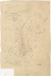 Předloha k porostní mapě revíru Milíře