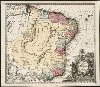 Recens elaborata mappa geographica regni Brasiliae in America Meridionali maxime celebris