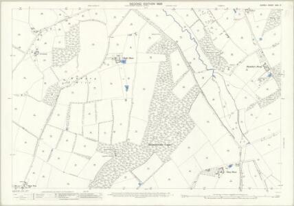 Surrey XXIV.3 (includes: Ockham; Ripley) - 25 Inch Map